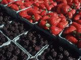 Fresh Fruit in Pike Place Market  Seattle  Washington  USA