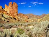 Dirt Trail Through Sagebrush and Tall Redstone Cliffs  Owyhee Area  Oregon  USA