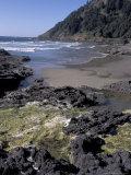 Yachats  Cape Cove  Cape Perpetua Scenic Area  Oregon  USA