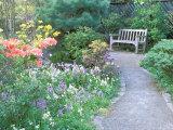 Parsons Gardens Park on Queen Anne Hill  Seattle  Washington  USA