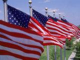 US Flags at Louisiana Mem Plaza  Baton Rouge