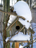 Snow Covering a Birdhouse