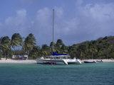 Daytrip Catamaran  Tobago Cays  Grenadines