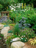 Garden Situated on a Hillside Overlooking Loch Ness  Scotland