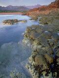 Corsican Coastline  Corsica  France
