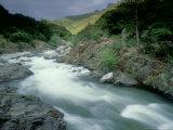 Kaweah River  Sierra Nevada  USA