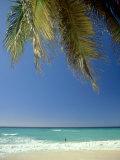 Beach  West Indies