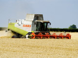 Combine Harvester  England