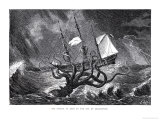 The Kraken  as Seen by the Eye of Imagination  from John Gibson's Monsters of the Sea  1887