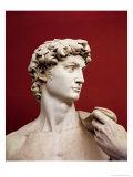 David  1501-04