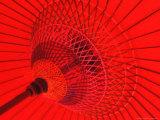 Red Radial  Japan