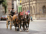 Horse Drawn Carriages  Weimar  Thuringen  Germany