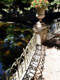 Fontaine de Medicis  Medicis' Fountain  Jardin de Luxemburg  Paris  France