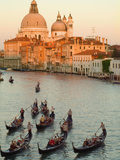 Sunset View of Gondolas in the Grand Canal and the Santa Maria Della Salute  Venice  Italy
