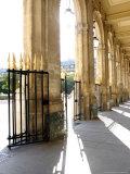 Jardin du Palais Royal  Royal Palace Garden  Paris  France