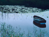 Rowboat on Lake Surrounded by Water Lilies  Lake District National Park  England