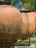 Urns in Archeological Park  Constanta  Romania