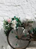 Souvenir Shop Bicycle  UNESCO World Heritage Site  Terra dei Trulli  Alberobello  Puglia  Italy