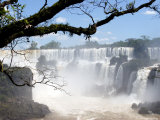 View of Iguassu Falls and Jungle  Argentina