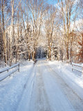 Winter Road in New England