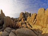 Jumbled Rocks  Joshua Tree National Park  California  USA