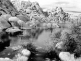 Barker Dam  Joshua Tree National Park  California  USA