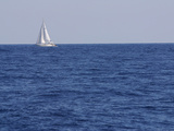 An Expanse of Blue Sea with a Single White Sailboat