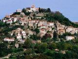 Medieval Hilltop Town  Motovun  Croatia