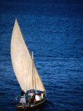 Traditional Dhow Leaving Port  Lamu  Coast  Kenya