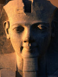 Statue of Ramses II at Luxor Temple  Luxor  Egypt