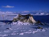 Nomadic Yak Herder's Tent in Snow on Tibetan Plateau  Langtang Himal  Tibet