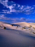 Sand Dunes Carved by Wind  Eucla National Park  Australia