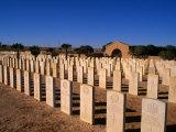 The Australian War Cemetery - Tobruk  Cyrenaica  Tobruk  Libya