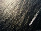 A Power Boat Streaks Across Sunlit Waters off Surfers Paradise  Queensland  Australia