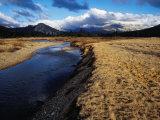 Toulumne Meadows  Mammoth Peak  Yosemite National Park  USA