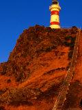 Cape Palliser Lighthouse and Staircase  Wairarapa  Wellington  New Zealand