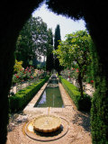 Garden and Fountain  Granada  Spain