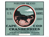 Cape Cod  Massachusetts - Pointer Brand Cranberry Label