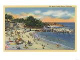 Pacific Grove  California - Sunbathers & Swimmers at the Beach