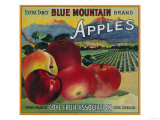 Blue Mountain Apple Crate Label - Cove  OR
