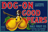 Dog On Good Pears Pear Crate Label - Suisun  CA