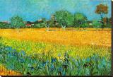 Vue d'Arles aux iris Tableau sur toile par Vincent Van Gogh