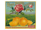 Rose Orange Label - Redlands  CA