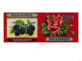 Rose Blackberry Label - San Francisco  CA