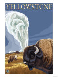 Yellowstone - Bison with Old Faithful
