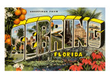 Greetings from Sebring  Florida