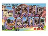 Greetings from Grand Canyon  Arizona