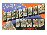 Greetings from Okefenokee Swamp  Georgia