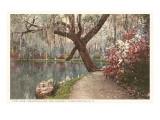Magnolia on the Ashley  Charleston  South Carolina