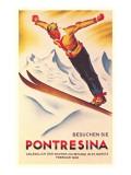 Ski Jumping Poster